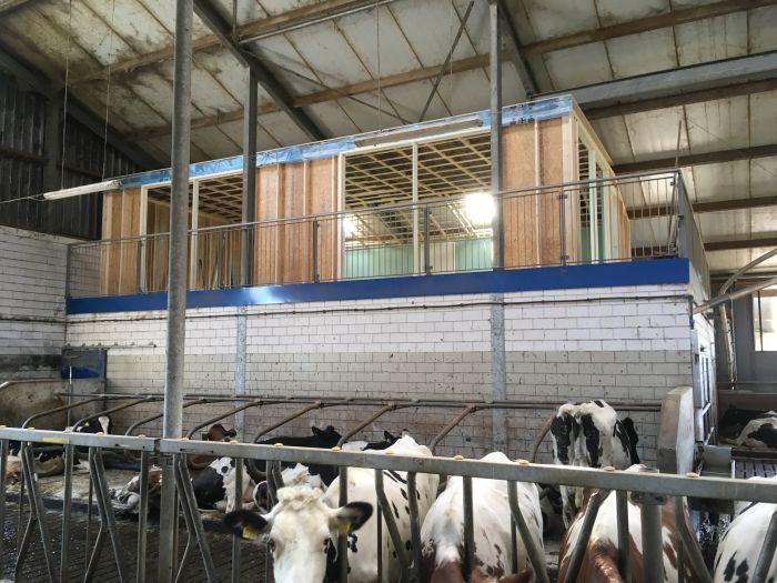 Skybox in koeienstal
